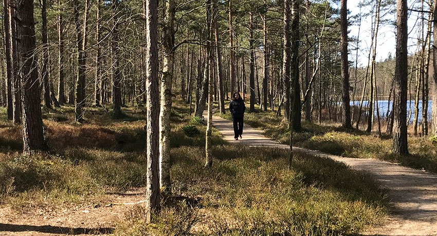 Walk in Biskopstorp