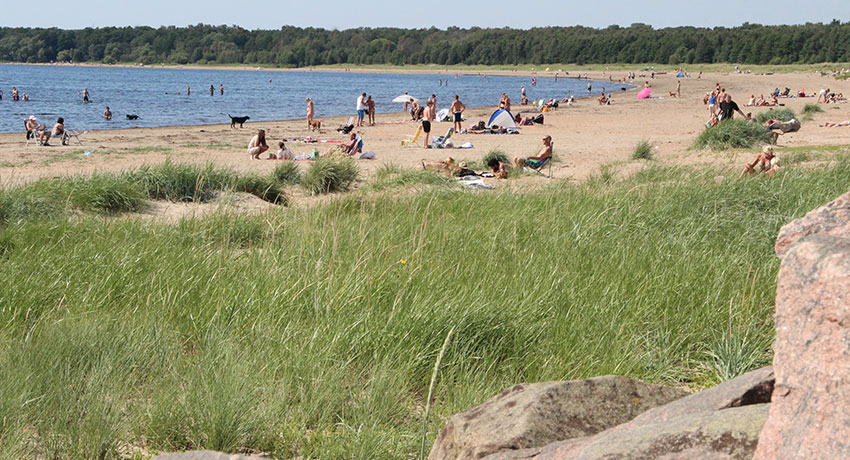 View of eastern beach with bathers on